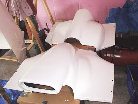 Painted Cowlings